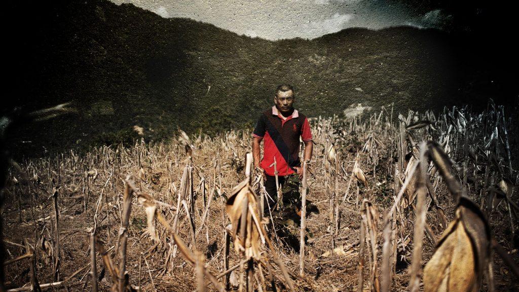 El corredor seco de Centroamérica: la inesperada y grave razón que impulsa el éxodo hacia los Estados Unidos |  Noticias climáticas